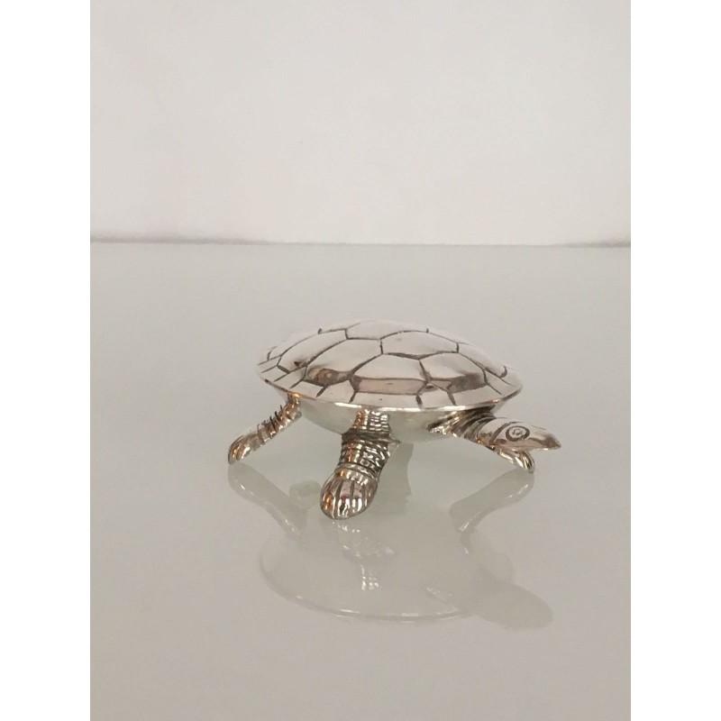 Scatola tartaruga in Sheffield