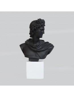 Mezzo busto di Apollo...
